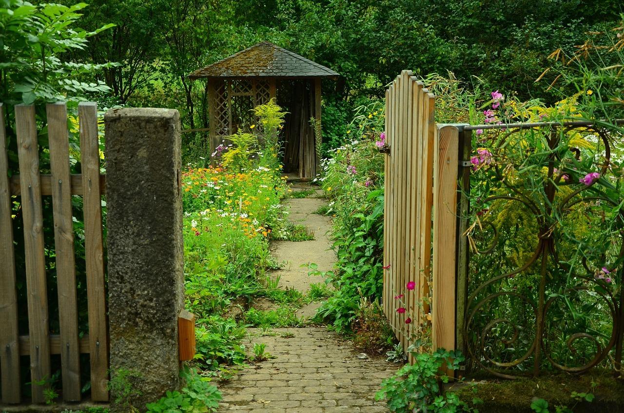 Qualche consiglio per i giardinieri… in erba!
